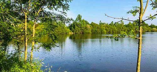Camping bord étang Vendée