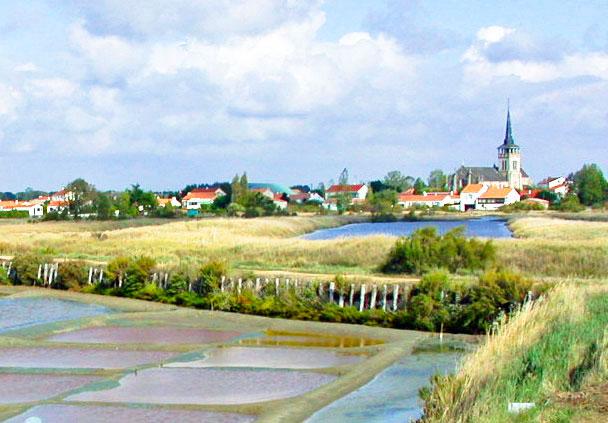 alentours étang Camping Vendée