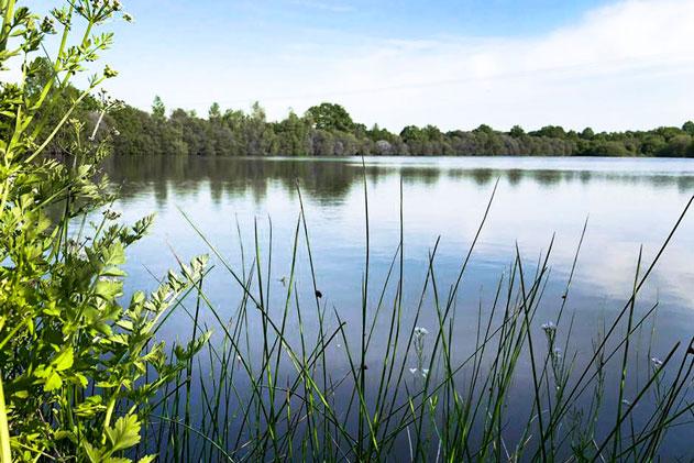 camping Vendée avec étang