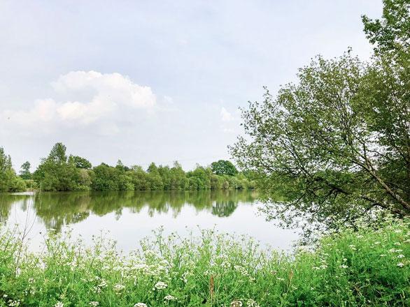 étang et verdure près camping Vendée