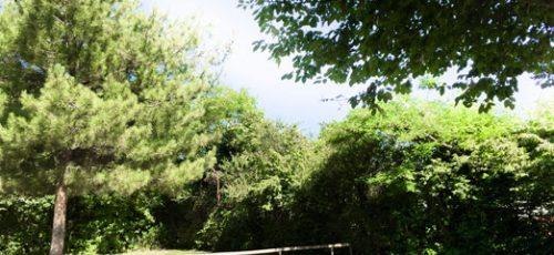 locatif emplacement camping près étang