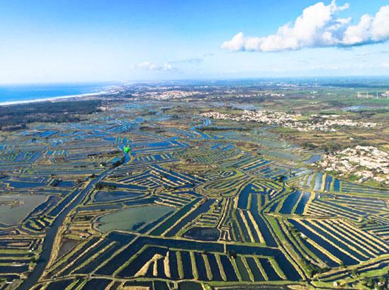 vue sur marais salant près camping Vendée